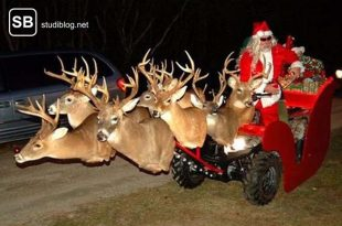 Lustiges Weihnachten mit einem motorisierten Rentierschlitten