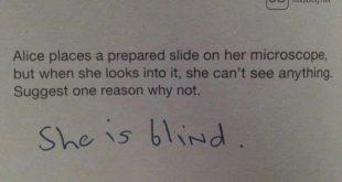 Geniale Antwort