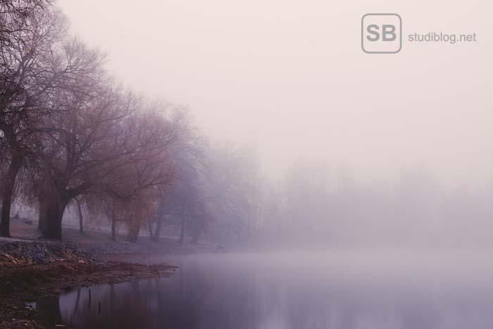 See im Nebel mit Bäume am Ufer zum Thema wie du den Winter an der Uni überlebst