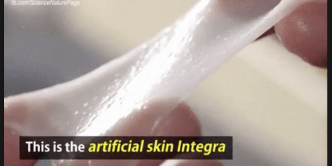 Künstliche Haut