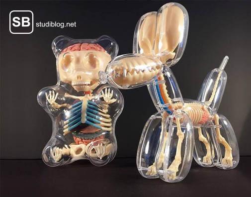 Anatomie der Kuscheltiere von Freeny am Beispiel eins Ballonhundes und eines Gummibären