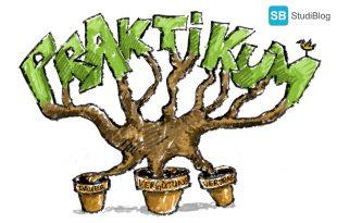Ein Baum teilt seine Wurzeln in Praktikumsdauer, Vergütung und Praktikumsvertrag auf.