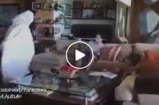 Vorschaubild zu einem Video mit einem Geister-Streich