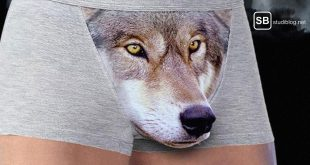 Wolf Unterhose