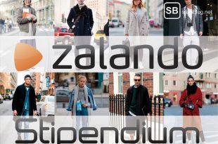Stipendium Zalando