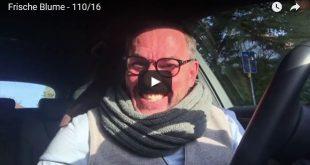 Beitragsbild zum Witze-Video der Blumenwitz - bald ist Valentinstag - vom Oli