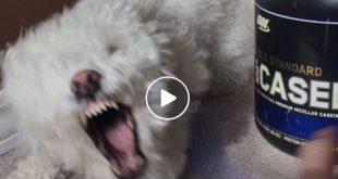"""Beitragsbild zum Video """"´Warum ich nicht lernen konnte"""""""