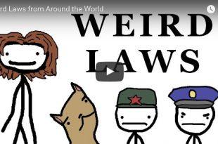 Beitragsbilder zum Video in dem die verrücktesten Gesetze der Welt vorgestellt werden