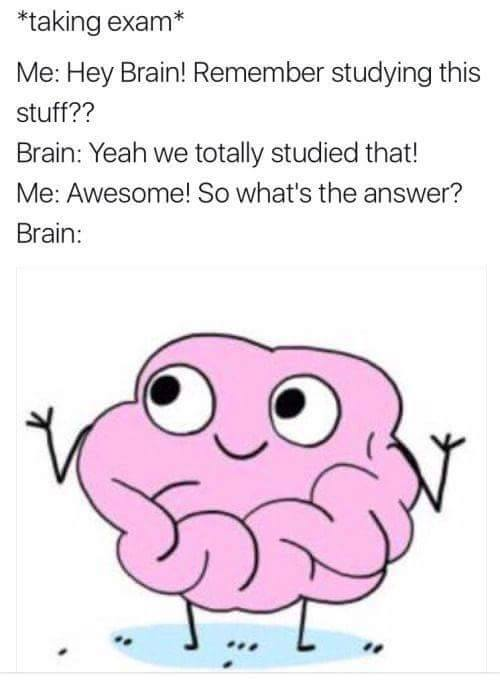 """taking exam"" Me: Hey Brain! Remember studying this stuff?? Brain: Yeah we totally studied that! Me: Awesome! So what´s the answer? Brain: ???"