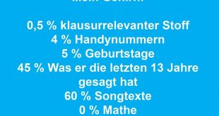 Mein Gehirn: 0,5% klausurrelevanter Stoff, 4% Handynummer, 5% Geburtstage, 45% Was er die letzten 13 Jahre gesagt hat, 60% Songtexte, 0% Mathe