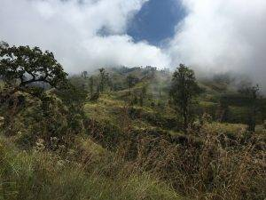 View on the way up to the Rinjani