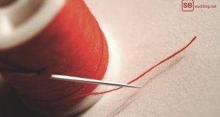 Der rote Faden für die Bachelorarbeit