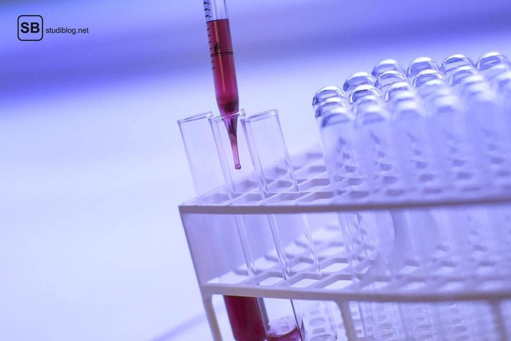 In ein Reagenzglas, das in einem Halter steht, wird rote Flüssigkeit mit einer Pipette geträufelt - der Biologiestudent.