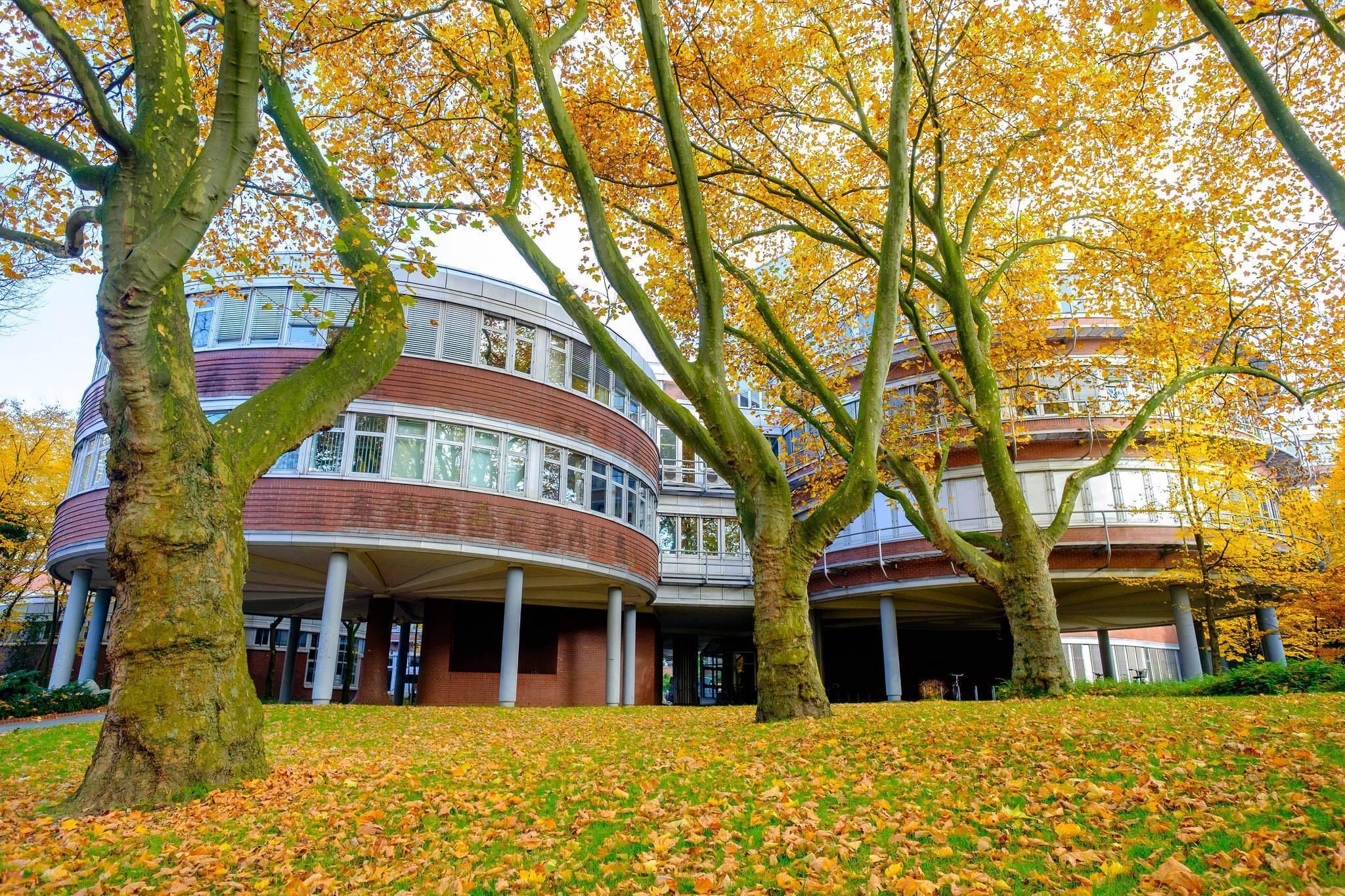 Uni Duisburg-Essen Medizin studieren