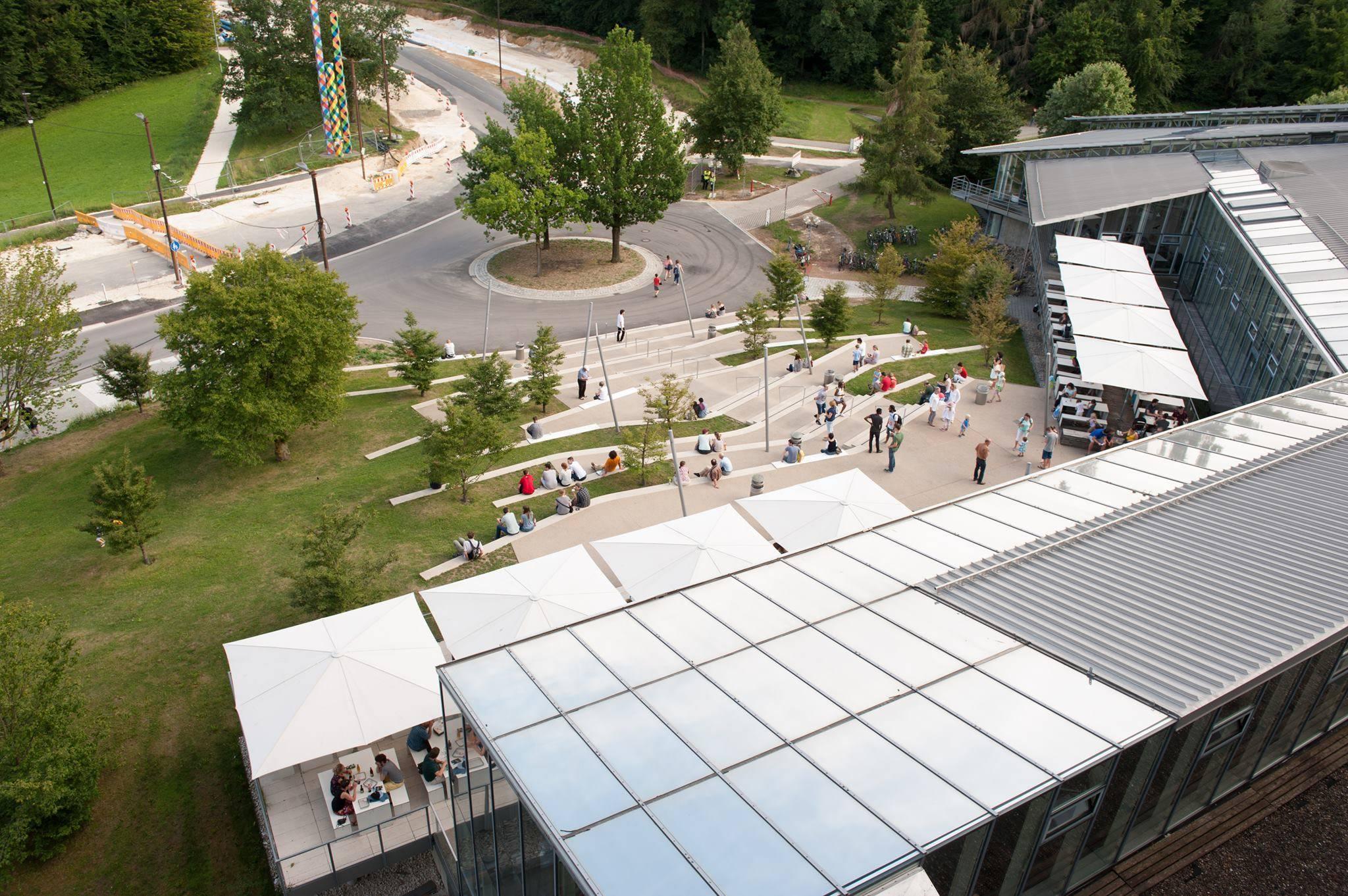 Uni Ulm Medizin studieren