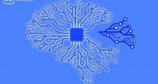 Netzwerkdarstellung des Gehirns zum Thema Erfolg durch positive Denkmuster