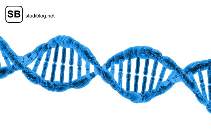 Blauer DNA-Strang - Sequenzierung der DNA mittels der Molekularbiologie.