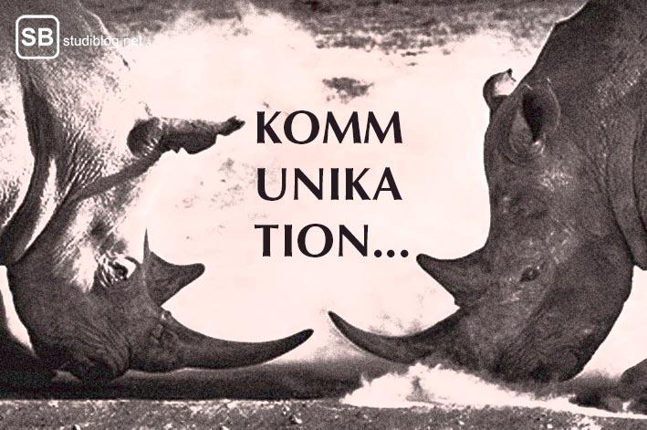Zwei Nashörner in einer Kopf an Kopf Konfrontation als Symbol für die richtige Kommunikation mit einem Dozenten