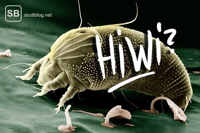 Hiwi, Blattlaus als Symbol für den Job