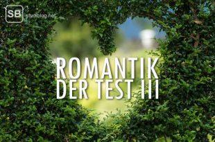 Der Test für Romantiker - Herz in einer Hecke mit dem Schriftzug des Beitragstitels