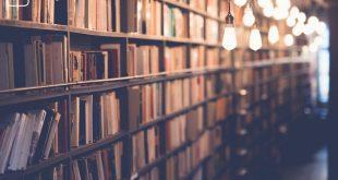 Ausschnitt einer Bibliothek zum Thema Schreiben einer Studienarbeit