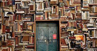 Große Bücherwand mit Tür zum Thema Übersicht über die Anleitungen zum Schreiben einer Studienarbeit