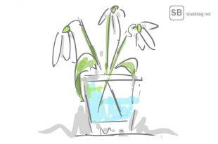 Frühling - Schneeglöckchen Zeichnung